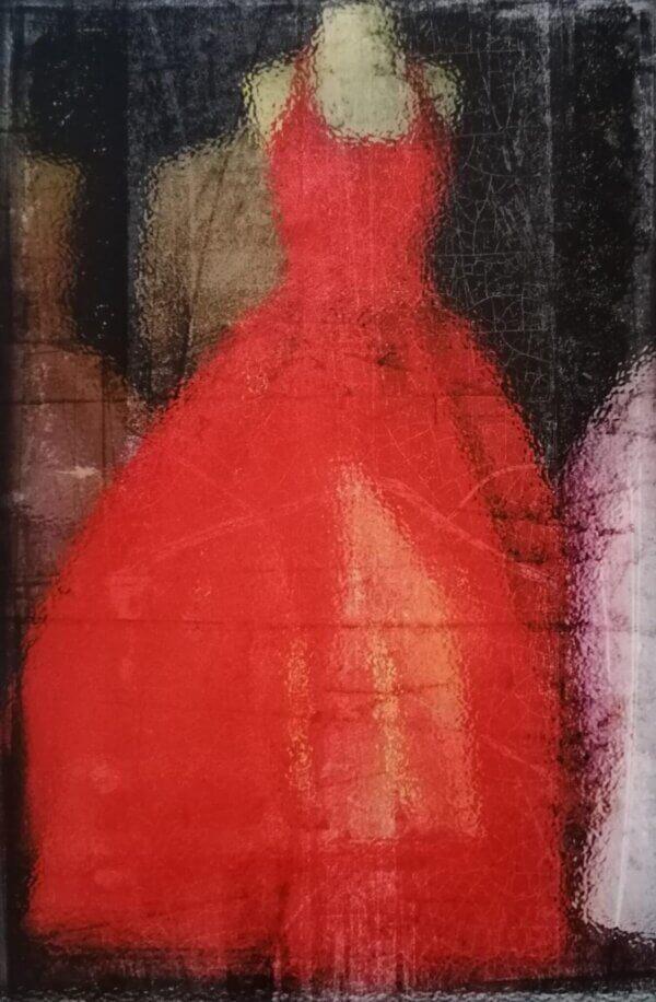 Aavo-Ermel-punane-kleit-digitrükk