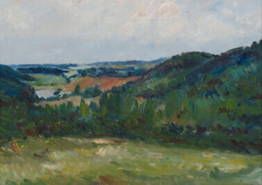 Aleksander-Vardi-Maastik