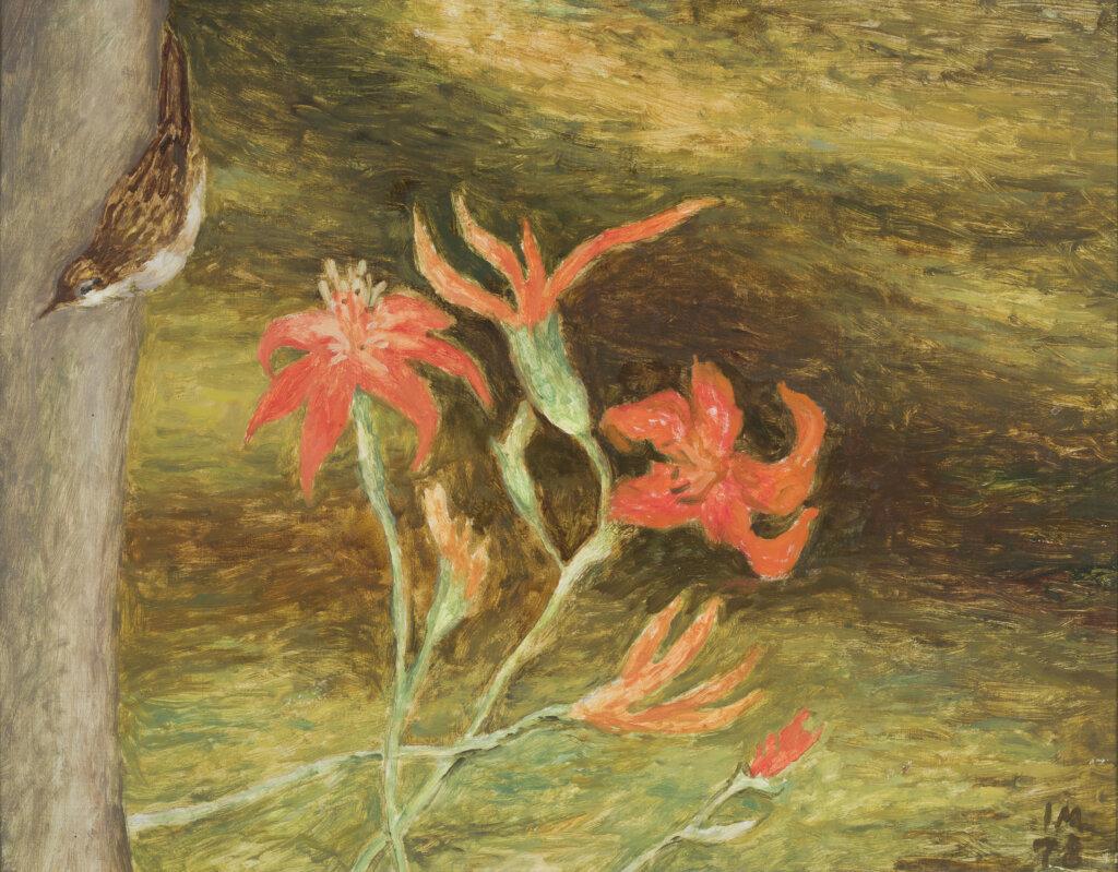 Ilmar-Malin-Ööbik-ja-tuliliilia