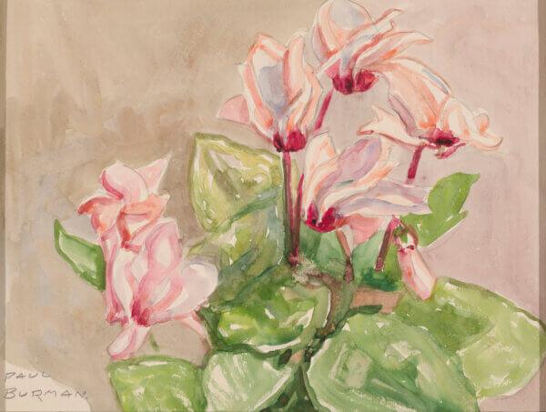Paul-Burman-akvarell-alpikannid